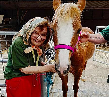 Petting Zoo Harlow Animals Farm Kids fun Animal feeding