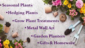 Garden Centre Harlow Tyndalls Garden Centre Garden Furniture Plants