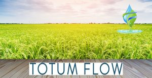Water Softener Harlow Totum Flow Reduce Limescale Water Filtration